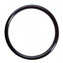 H-118 Omnipure Filter Head O-Ring